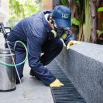 pest control services,